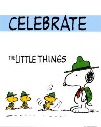 Celebrate-Small-Successes-Victories-Little-Things